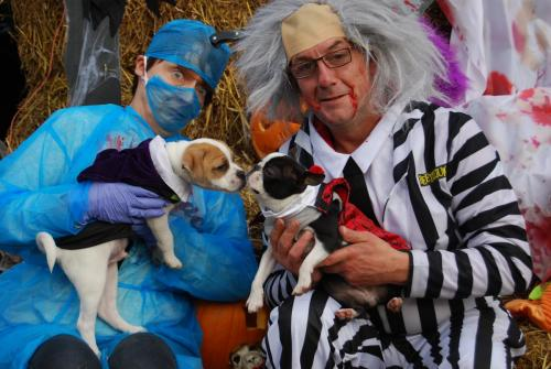 Bert and Harley with an Evil Vet and Beatle Juice